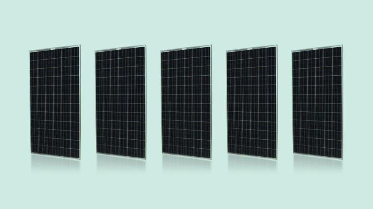 Silvantis 330 watt Solar Panel. Image: Silvantis