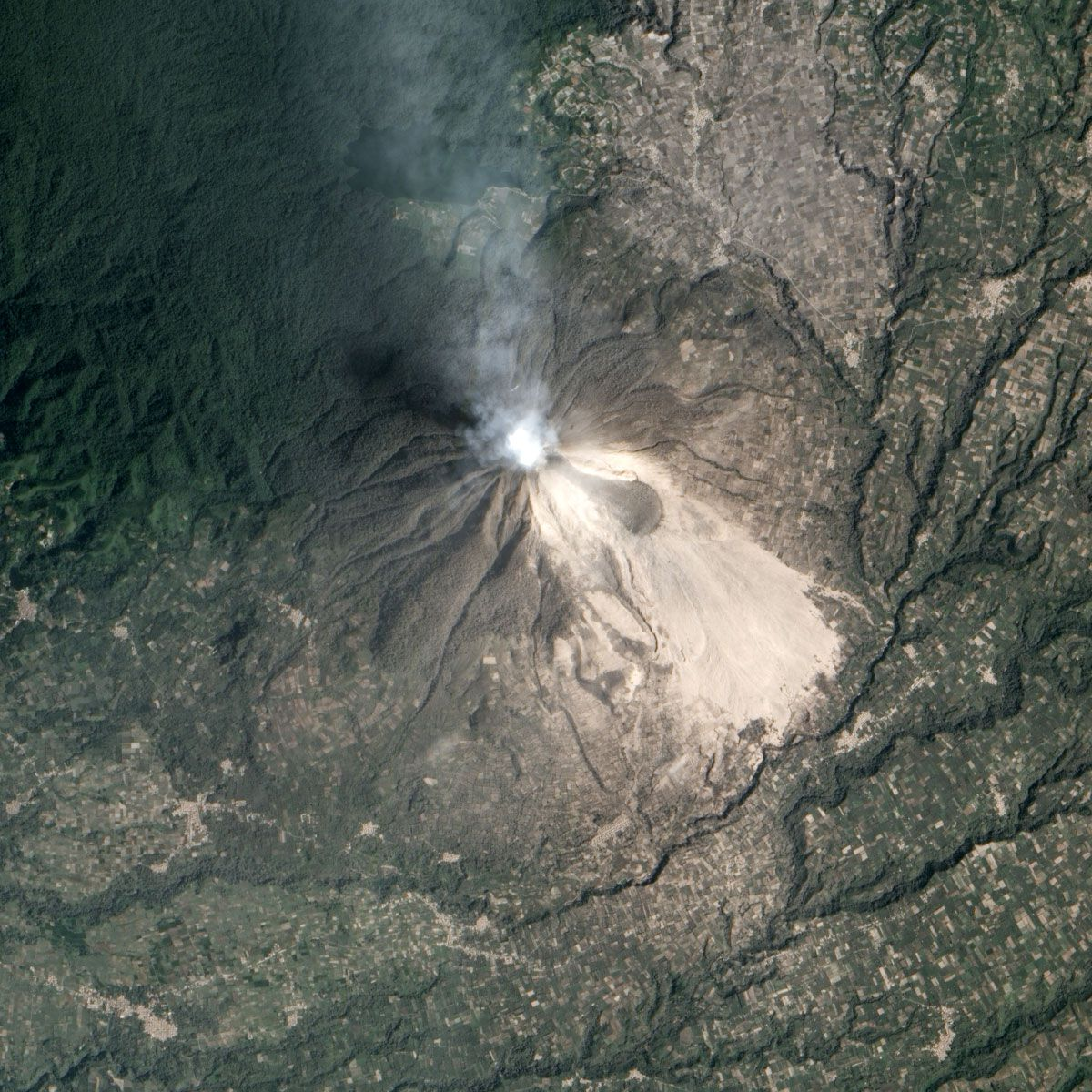 Mount Sinabung detail, February 2014